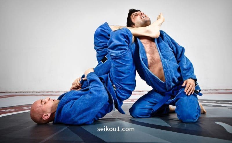 柔術トレーニングの助け