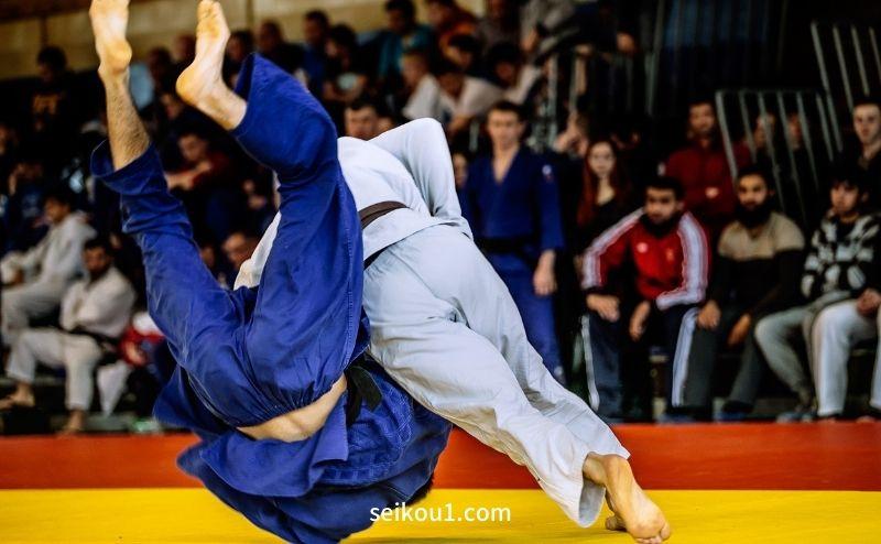 柔道トレーニングの助け